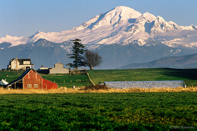 Whatcom County Farm, Mount Baker